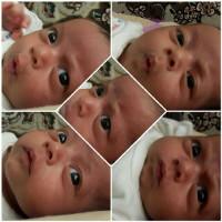 fayzeh